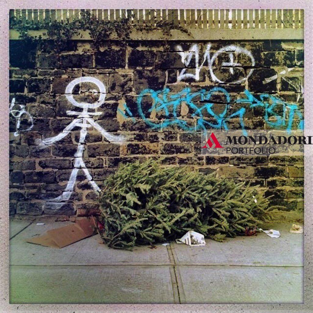 Un albero abbandonato accanto a una pittura tropicale, aspetta di essere raccolto dalla nettezza urbana