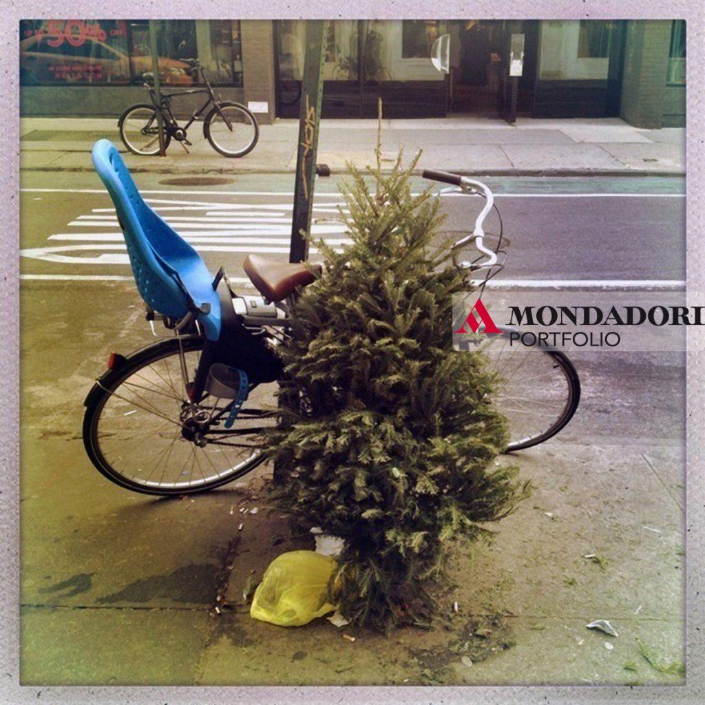 Un albero è stato abbandonato accanto a una bicicletta sui marciapiedi di New York