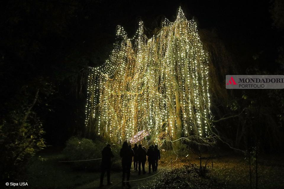 Quando fare l'albero? Il Christmas Garden Berlin e il suo albero si trovano nel giardino botanico della capitale tedesca.