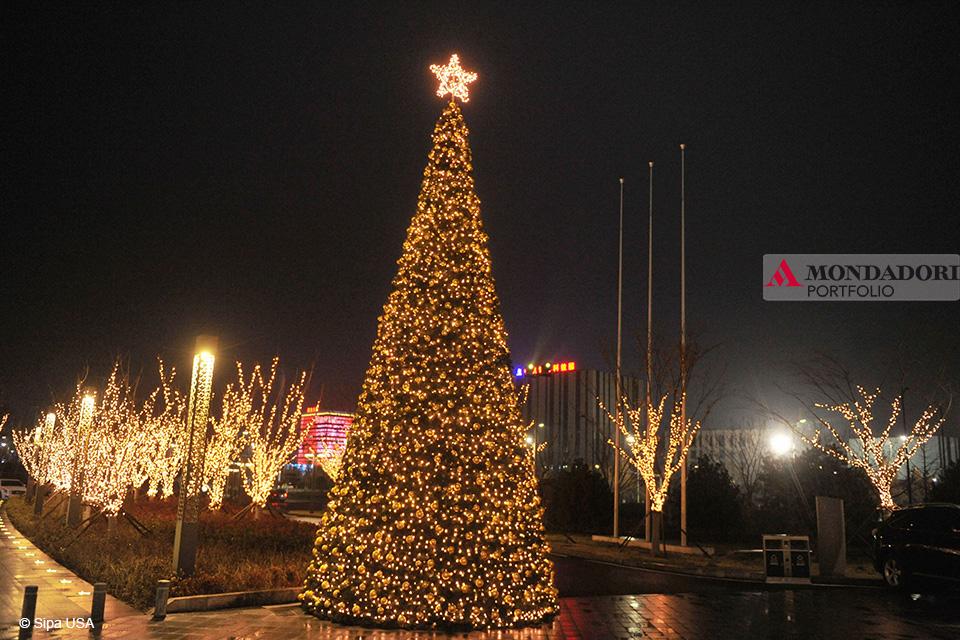 Quando fare l'albero? Anche in Cina l'atmosfera natalizia si fa sentire. Questo è l'albero di Qingdao, nell'est del Paese.